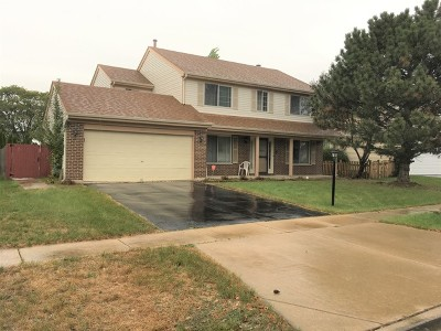 Streamwood Single Family Home For Sale: 229 Pepperidge Circle