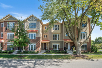 Geneva Condo/Townhouse For Sale: 413 North 2nd Street