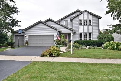 Elburn Single Family Home For Sale: 505 Banbury Avenue