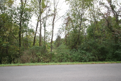 New Lenox Residential Lots & Land For Sale: 993 North Vine Street