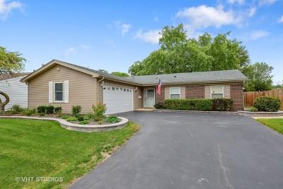 Streamwood Single Family Home For Sale: 221 Judy Lane