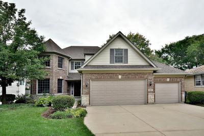 Elmhurst Single Family Home For Sale: 267 East Columbia Avenue