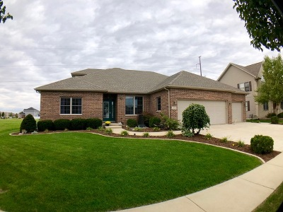 Bourbonnais Single Family Home For Sale: 2003 Old Brick Road