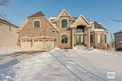 Naperville Single Family Home For Sale: 3124 Deering Bay Drive
