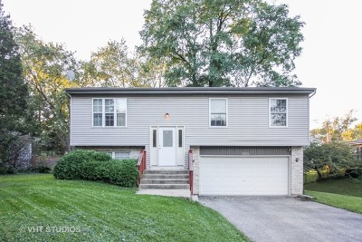 Downers Grove Single Family Home For Sale: 6212 Leonard Avenue