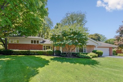 Palatine Single Family Home For Sale: 311 North Elmwood Lane