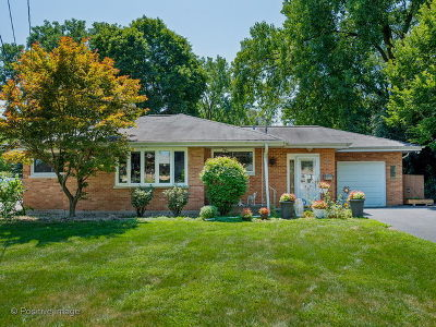 Wheaton Single Family Home For Sale: 810 Pershing Avenue