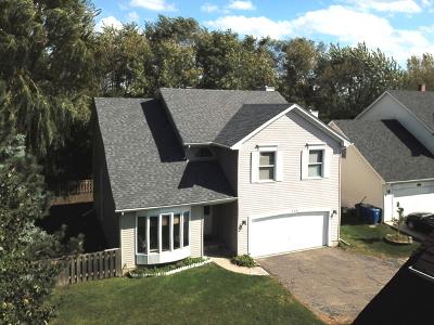 Bartlett Single Family Home For Sale: 339 Windsor Drive