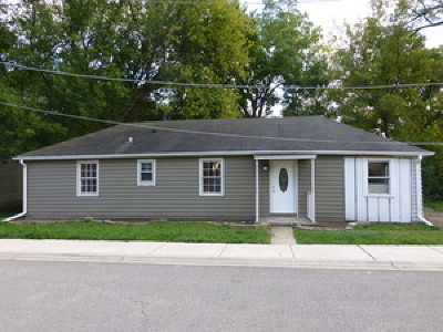 Palatine Single Family Home For Sale: 353 West Johnson Street
