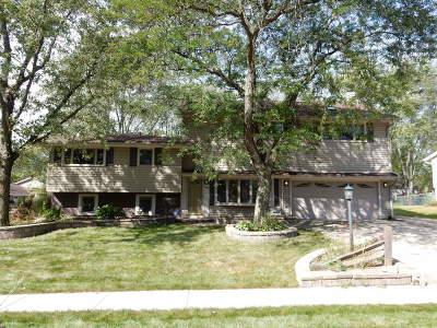 Schaumburg Single Family Home Price Change: 1532 Princeton Lane