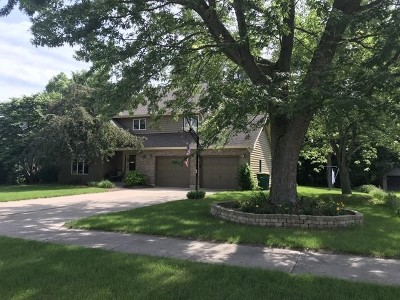 Wilmington IL Single Family Home For Sale: $244,999