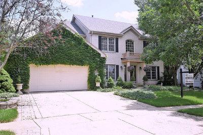 Geneva Single Family Home For Sale: 0n537 East Weaver Circle