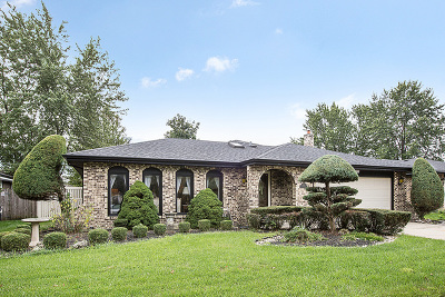 Orland Park Single Family Home For Sale: 7737 Cashew Drive