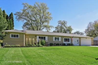 Hoffman Estates Single Family Home For Sale: 725 Ash Road
