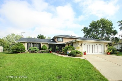 Bensenville Single Family Home For Sale: 817 River Forest Court