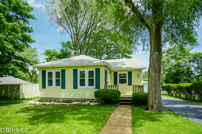 Mokena Single Family Home For Sale: 19433 Wolf Road