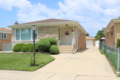 Franklin Park Single Family Home For Sale: 10204 McNerney Drive