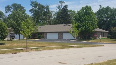 New Lenox Condo/Townhouse For Sale: 189 Batson Court #1