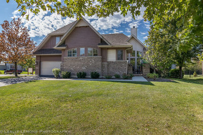 Single Family Home For Sale: 536 North Sycamore Lane