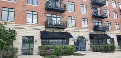 Aurora Condo/Townhouse For Sale: 160 South River Street #412