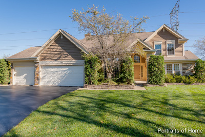 Buffalo Grove Single Family Home For Sale: 565 Coventry Lane