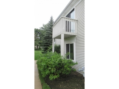 Hoffman Estates Condo/Townhouse For Sale: 1595 Cornell Place