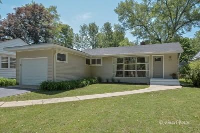 Geneva Single Family Home For Sale: 602 High Street