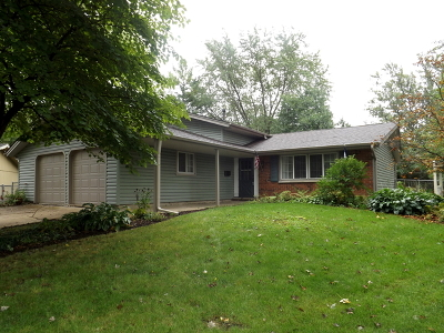 Schaumburg Single Family Home For Sale: 427 Cable Court