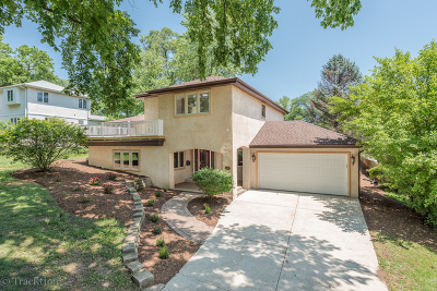 Downers Grove Single Family Home For Sale: 4609 Puffer Road