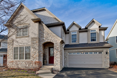 Glenview Single Family Home For Sale: 2742 Summit Drive
