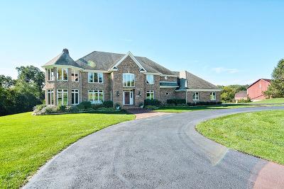 Kane County Single Family Home For Sale: 37w171 Crane Road