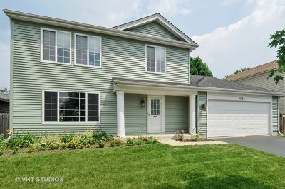 Naperville Single Family Home For Sale: 1728 Coach Drive