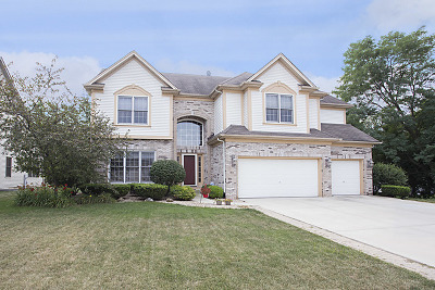 Plainfield Single Family Home For Sale: 22619 Fox Trail Lane North West