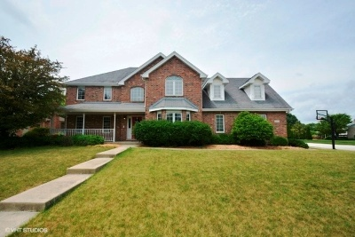 Tinley Park Single Family Home For Sale: 7700 Joliet Drive
