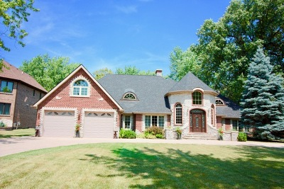 Wood Dale Single Family Home For Sale: 397 East Deerpath Road