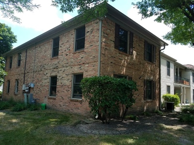 Hoffman Estates Condo/Townhouse For Sale: 1760 Sessions Walk #B