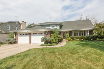 Downers Grove Single Family Home For Sale: 850 Jay Drive