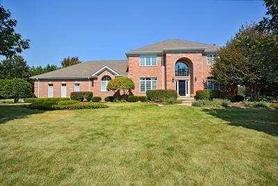 St. Charles Single Family Home For Sale: 38w210 Henricksen Road