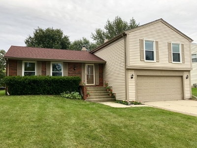 Schaumburg Single Family Home For Sale: 111 North Staffire Drive