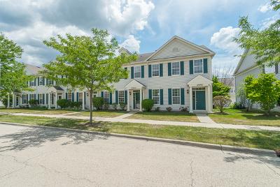 Aurora Condo/Townhouse For Sale: 2543 Hillsboro Boulevard #55-4