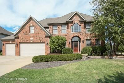 Plainfield Single Family Home For Sale: 25765 West Sunnymere Drive