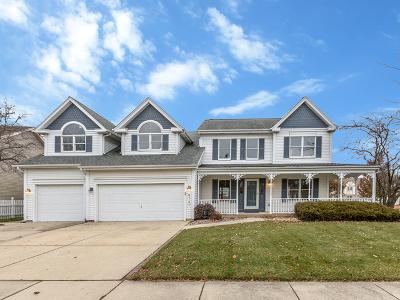 Carol Stream Single Family Home For Sale: 872 New Britton Road