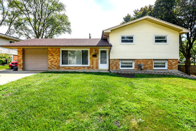 Hoffman Estates Single Family Home For Sale: 495 West Newport Road