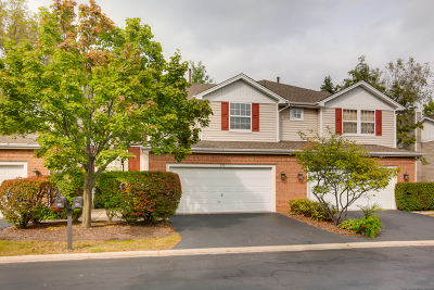 Willowbrook Condo/Townhouse For Sale: 272 Snug Harbor Drive #272