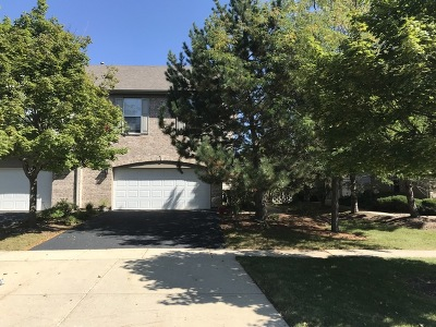 Hoffman Estates Condo/Townhouse For Sale: 2196 Yale Circle