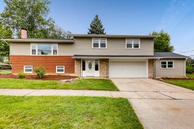 Lombard Single Family Home For Sale: 300 East View Street