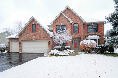 Naperville Single Family Home For Sale: 2644 Sweetbroom Road