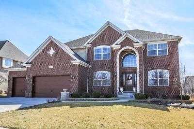 Naperville Single Family Home For Sale: 3208 Twilight Avenue