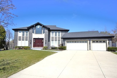 Northbrook Single Family Home For Sale: 805 Pinto Lane