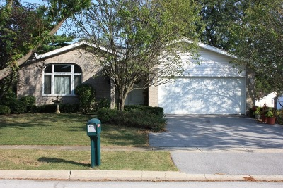 Steger Single Family Home For Sale: 133 Valleywood Drive